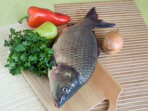 Carp fish close up on chopping board