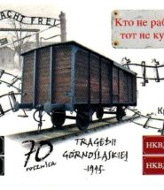 tragedia-gornoslaska-856