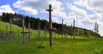 Parki linowe na Śląsku dla dzieci i dorosłych. 5 parków linowych, w których mogą bawić się dzieci i dorośli